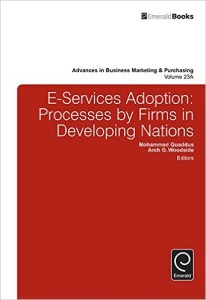 E-Services Adoption: Processes by Firms in Developing Nations: 23 (Advances in Business Marketing and Purchasing)